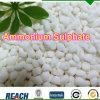 粒状タイプ肥料のアンモニウムの硫酸塩