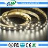 Alta striscia di lumen SMD3528 4.8W/M LED con CE&RoHS per uso dell'interno
