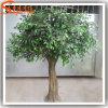 De goedkope Kunstmatige Bomen van Ficussen voor de Decoratie van de Tuin