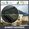 Coated en pierre Roof Tile dans Building Material