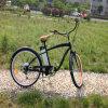 Bicicleta eléctrica Rseb-1214 del crucero adulto de la playa