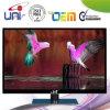 Marque 2015 de la Chine meilleure vendant 32 pouces LED futée TV