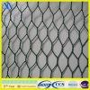PVC cable verde Jardín pollo tela metálica (XA-HM415)