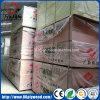 Madera contrachapada del álamo de BB/CC para el embalaje y los muebles