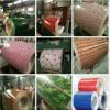 Al-Zn enduisant 30/50/70/100 G/M2 PPGL en couleurs la bobine en acier enduite