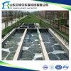 Stabilimento di trasformazione di acqua di scarico di Bioteactor della membrana di Mbr (MBR)
