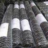 Rede de fio revestida de Netting&Hexagonal das aves domésticas do vinil preto