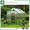 Landwirtschafts-/Werbungs-/Garten-grüne Plastikhäuser mit Kühlsystem
