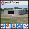 Almacén de la estructura de acero del surtidor de Professionall (SSW-14027)