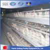 De Hete Verkoop van de Kooi van de Kip van de Laag van de Voeder van de kip in Nigeria