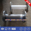 Joints de dilatation de l'usine PTFE de taille normale