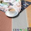 Decking/assoalho compostos plásticos de madeira ao ar livre Eco-Friendly (TS-01)