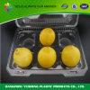 Envase disponible de la fruta de la cubierta del acondicionamiento de los alimentos