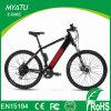 Ciclo elétrico de E com a bateria interna no frame rodas de 27 a 28 polegadas