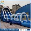 Diapositiva inflable gigante popular con la piscina, diapositiva de agua inflable para los cabritos y adultos para la venta