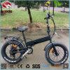 Fabrik Großhandels250w elektrisches Fahrrad-fettes Gummireifen-Fahrrad mit Qualität billig faltend