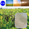 Fertilizante Especial para Feijão Mung Humate Potassium Amino Acid Potassium