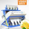 Neueste Kanäle ISO CCD-256 u. Cer-Bestes mit hohem Ausschuss Erdnuss-Farben-Sorter-Diplommaschine