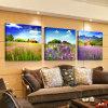 Maschera moderna di arte della parete della decorazione della stanza della pittura della lavanda della pittura di parete di vendita calda delle 3 parti verniciata sulla decorazione Mc-223 della casa della tela di canapa