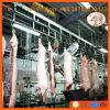 Bétail de solutions d'un arrêt et ligne de production à la machine d'abattoir de matériel d'abattage de porc pour le porc de chèvre de moutons de vache à mère