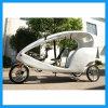 Carrito eléctrico de Pedicab para el alquiler