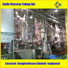 Halal Slaughter Cattle Slaughterhouse Maschinerie
