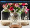 Choc en verre de Cloche de D12*H20 Bell avec le modèle de dessus de beauté