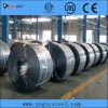 Sale Black Continuous Annealed Steel에