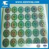 Het Overdrukplaatje van de Sticker van het Lichaam van de Motorfiets van de Auto van de laser