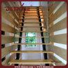 Barandilla de madera por hierro Escaleras (DMS-8020)