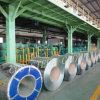 30 strisce d'acciaio/alta qualità di Gague HDG hanno galvanizzato la bobina d'acciaio