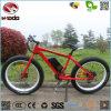 Kit eléctrico de la conversión de la bicicleta de la playa de la bici eléctrica de la suciedad para la venta