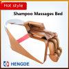 Silla del salón del masaje, silla del salón de pelo