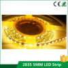 12V SMD 2835 120 LED / M 5mm PCB delgada tira del LED