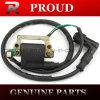 Pezzi di ricambio del motociclo di alta qualità della bobina di accesione C90 C100 CD70