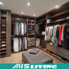 가정 가구 단순한 설계 옷장 (AIS-W306)