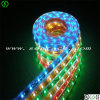 5050 RGB LED Strip mit CER Certificates