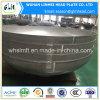 Tête ellipsoïde bombée par matériau de l'acier inoxydable 316L