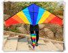 Напольная потеха резвится змей перепада силы 2.5 m с инструментами летания Multicolor