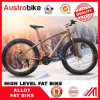 Lowerstの価格のFatbikeの完全な中断フォーク、脂肪質のバイクフレームアルミニウム、販売のためのカーボンFatbikeフレームカーボン脂肪質のバイクを卸し売りしなさい