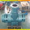 Pompe à eau centrifuge de moteur marin vertical de survolteur d'acier inoxydable (RS-801)