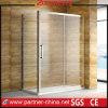 Steel di acciaio inossidabile 304 con la doccia PT1131 di Glass