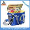 Il pranzo più freddo di picnic del ghiaccio isolato poliestere può insaccare per alimento Frozen