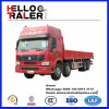 Pesado-dever Bulk Cargo Truck de Sinotruk 8X4 30HP