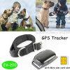 IP66 Waterproof o perseguidor do GPS dos animais de estimação com colar (EV-200)