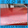 Red Film Faced Plywood/Construction Plywood