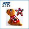 Chandail multicolore de crabot de crochet de main de produits d'animal familier