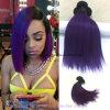 자주색 브라질 Virgin 머리 10 인치 Ombre 색깔