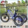 人の女性のための脂肪質のタイヤ様式3の車輪のバイク