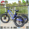 旅行の使用のDiffの人の女性のための脂肪質のタイヤ様式3の車輪のバイク